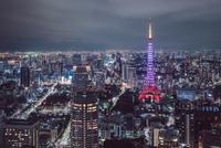 東京 の夜