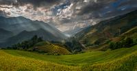 """Amazing"" Rice terraces 11098076446| 写真素材・ストックフォト・画像・イラスト素材|アマナイメージズ"