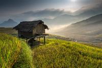 Heavenly home 11098076456| 写真素材・ストックフォト・画像・イラスト素材|アマナイメージズ