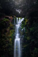 Flow of Life 11098076524| 写真素材・ストックフォト・画像・イラスト素材|アマナイメージズ