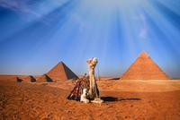 Desert ship 11098076785| 写真素材・ストックフォト・画像・イラスト素材|アマナイメージズ