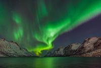 magic of the night 11098076979| 写真素材・ストックフォト・画像・イラスト素材|アマナイメージズ