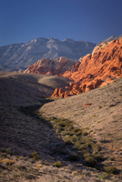 Red Rock Canyon 10 11098077022| 写真素材・ストックフォト・画像・イラスト素材|アマナイメージズ