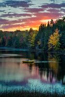 Michigan Morning 11098077049| 写真素材・ストックフォト・画像・イラスト素材|アマナイメージズ