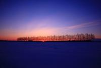 The sunrise morning 11098077081| 写真素材・ストックフォト・画像・イラスト素材|アマナイメージズ