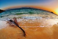 Tropical beach at sunrise, Thailand 11098077121| 写真素材・ストックフォト・画像・イラスト素材|アマナイメージズ