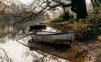 Tranquil Morning 11098077525| 写真素材・ストックフォト・画像・イラスト素材|アマナイメージズ