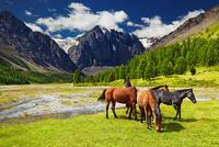 Mountain landscape 11098077692| 写真素材・ストックフォト・画像・イラスト素材|アマナイメージズ