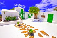 spain,canary islands,lanzarote :  casa del campesino 11098077997  写真素材・ストックフォト・画像・イラスト素材 アマナイメージズ