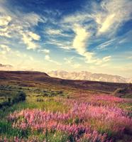 Mountain Landscape 11098078127| 写真素材・ストックフォト・画像・イラスト素材|アマナイメージズ