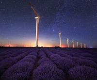 Evening with lavender scent 11098078174  写真素材・ストックフォト・画像・イラスト素材 アマナイメージズ