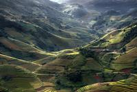 Top view (Mu cang chai) 11098078228| 写真素材・ストックフォト・画像・イラスト素材|アマナイメージズ
