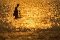 Silhouette Man Fishing 11098078250| 写真素材・ストックフォト・画像・イラスト素材|アマナイメージズ