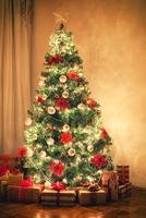 Christmas Tree 11098078459| 写真素材・ストックフォト・画像・イラスト素材|アマナイメージズ