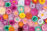 Handmade paper flowers 11098078461| 写真素材・ストックフォト・画像・イラスト素材|アマナイメージズ