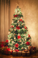Christmas Tree 11098078491  写真素材・ストックフォト・画像・イラスト素材 アマナイメージズ