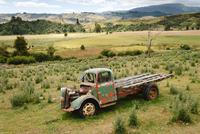 Old Truck 11098078772  写真素材・ストックフォト・画像・イラスト素材 アマナイメージズ