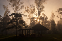 Broadwater Sunrise 11098078815| 写真素材・ストックフォト・画像・イラスト素材|アマナイメージズ