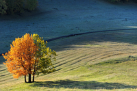 Autumn 11098078828| 写真素材・ストックフォト・画像・イラスト素材|アマナイメージズ