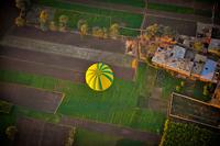 Balloon Fields 11098079277| 写真素材・ストックフォト・画像・イラスト素材|アマナイメージズ