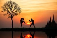 Thai's boxing 11098079327| 写真素材・ストックフォト・画像・イラスト素材|アマナイメージズ