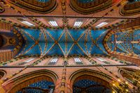 Krakau, Ceiling of St Mary's Church 11098080326| 写真素材・ストックフォト・画像・イラスト素材|アマナイメージズ