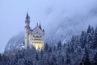 Neuschwanstein Castle 11098080558  写真素材・ストックフォト・画像・イラスト素材 アマナイメージズ