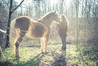 Woman stroking horse 11098080820| 写真素材・ストックフォト・画像・イラスト素材|アマナイメージズ