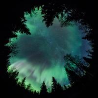 Forest and Beyond 11098080862| 写真素材・ストックフォト・画像・イラスト素材|アマナイメージズ