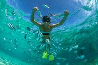 Snorkeling in Mauritius 11098080939| 写真素材・ストックフォト・画像・イラスト素材|アマナイメージズ