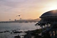 Sunset at Busan, South Korea 11098081040| 写真素材・ストックフォト・画像・イラスト素材|アマナイメージズ