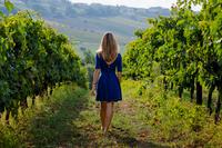 Girl walking in vineyard 11098081155| 写真素材・ストックフォト・画像・イラスト素材|アマナイメージズ