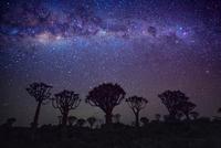 Namibian Night 11098081731| 写真素材・ストックフォト・画像・イラスト素材|アマナイメージズ