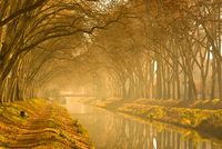 Canal Du Midi 11098081763| 写真素材・ストックフォト・画像・イラスト素材|アマナイメージズ