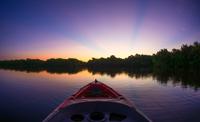 Sunrise at the Everglades 11098081908| 写真素材・ストックフォト・画像・イラスト素材|アマナイメージズ