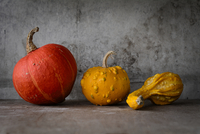 Pumpkins 11098082257| 写真素材・ストックフォト・画像・イラスト素材|アマナイメージズ