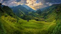 Rice fields on terraced of Mu Cang Chai on sunset 11098082271| 写真素材・ストックフォト・画像・イラスト素材|アマナイメージズ
