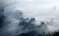 misty morning 11098082704| 写真素材・ストックフォト・画像・イラスト素材|アマナイメージズ