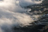 Sea of Clouds 11098082814| 写真素材・ストックフォト・画像・イラスト素材|アマナイメージズ