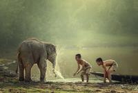 Two boys and baby elephant 11098083057| 写真素材・ストックフォト・画像・イラスト素材|アマナイメージズ
