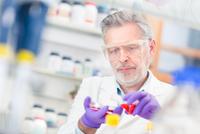 Life scientist researching in the laboratory. 11098086259  写真素材・ストックフォト・画像・イラスト素材 アマナイメージズ