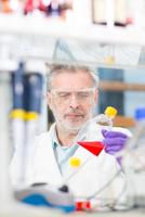 Life scientist researching in the laboratory. 11098086260  写真素材・ストックフォト・画像・イラスト素材 アマナイメージズ
