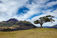 Ecuador_2835.tif 11099001689| 写真素材・ストックフォト・画像・イラスト素材|アマナイメージズ