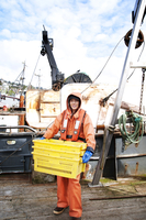 Fisherwoman holding crates with crabs on boat
