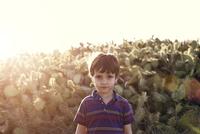 Portrait of boy (4-5) against cacti