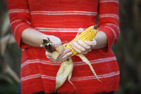Woman peeling corn cob