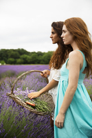 Friends looking at lavender field