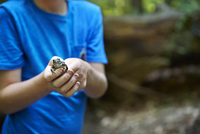 Boy holding frog