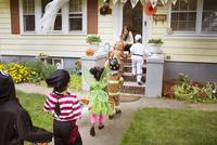 Children (2-3, 4-5) wearing costumes on halloween 11100020927| 写真素材・ストックフォト・画像・イラスト素材|アマナイメージズ