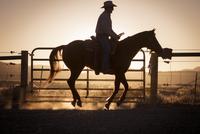 Man horseback riding at sunset 11100023649| 写真素材・ストックフォト・画像・イラスト素材|アマナイメージズ